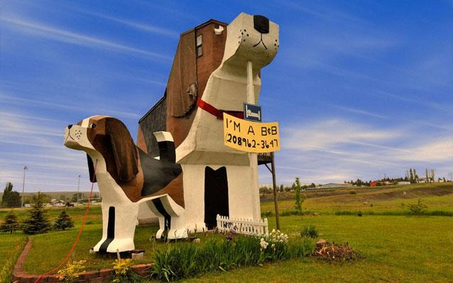 Dog-shaped B and B in the USA