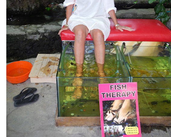 Fish therapy on feet at Yakapark